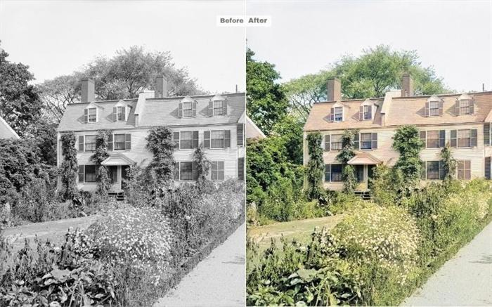 Historical Photos Colorizing